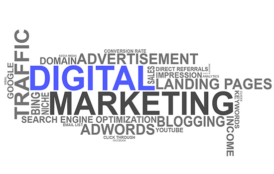 Sales and marketing in Chelmsford, Essex